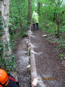 Repairs to North Path East - 6-5-2015